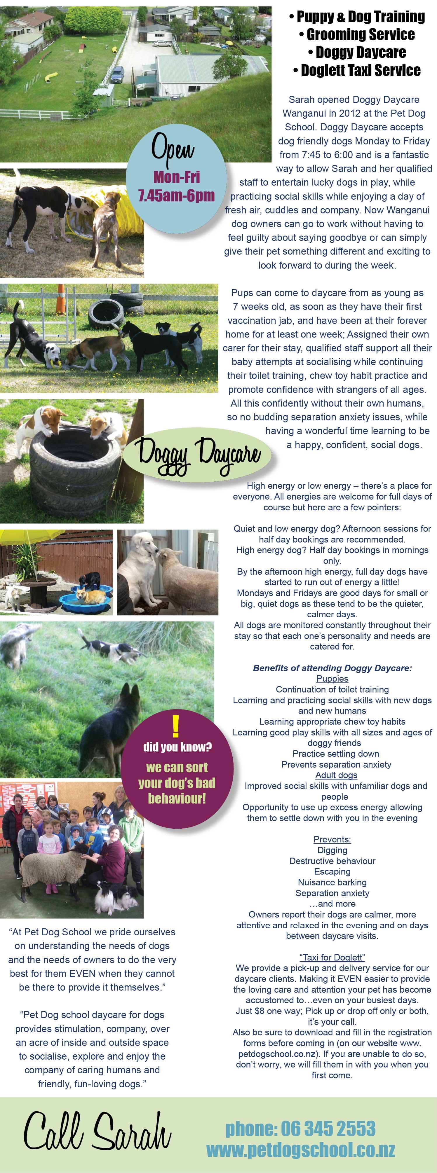 Pet Dog School, Wanganui. Dog Training, Puppy Training, Grooming, dog groomer, dog daycare • Puppy & Dog Training • Grooming Service • Doggy Daycare • Doglett Taxi Service