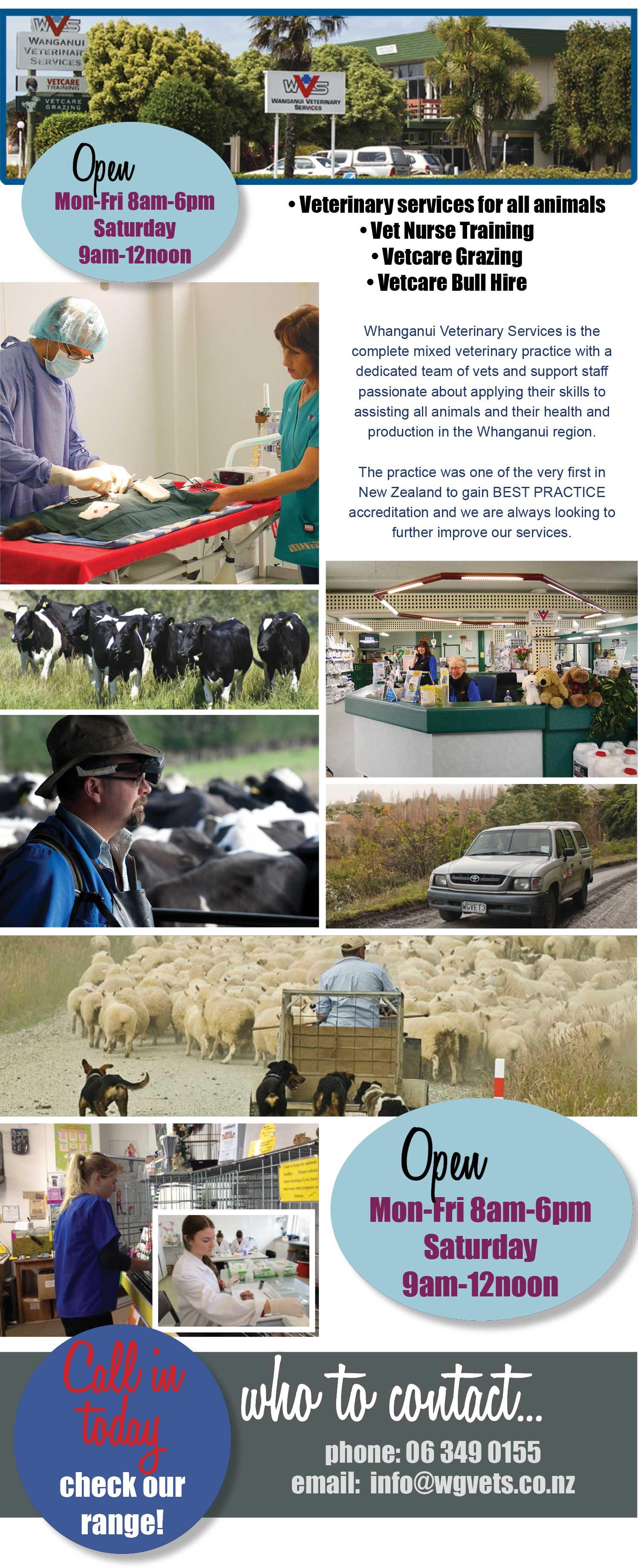 Wanganui Vet Services. Veterinary services for all animals, Vet nurse training, Vetcare grazing, Vetcare Bull hire, vets Wanganui