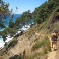 Homunga - Waihi Beach Track