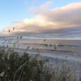 looking north down Waihi Beach