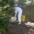 Rick adding on the honey box