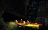 Kayaking Waimarino