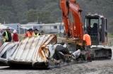 Waihi Beach Rena Cleanup