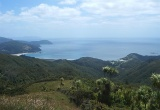 Waikawau Bay