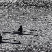 10km Row of Whanganui River: AWRC team of past & present students; Cameron Lawrence, (James Sandston), Luke Watts, Hugh Pawson, Jonty Thomson, Levi Carroll, Nathan Luff, Guy Thomson & cox Niamh Mullany won the day, Chronicle 14/11/17.