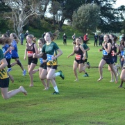 WSS Cross Country 24/5/18.