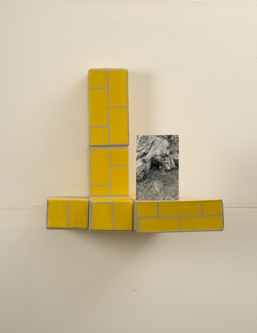 Yellow Brick Shelf with Tree Trunk Hole